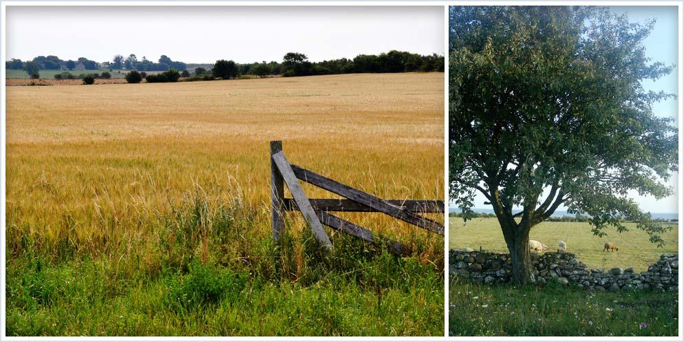 Sundre, Gotland och omgivningen